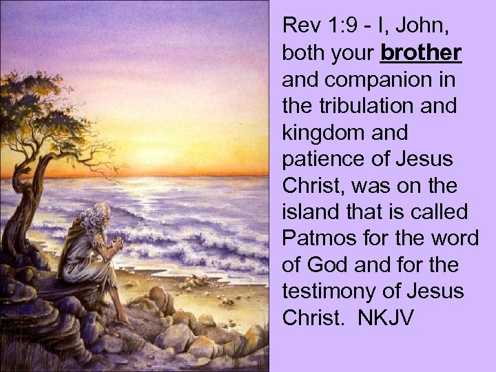 Rev 1: 9 - I, John, both your brother and companion in the tribulation