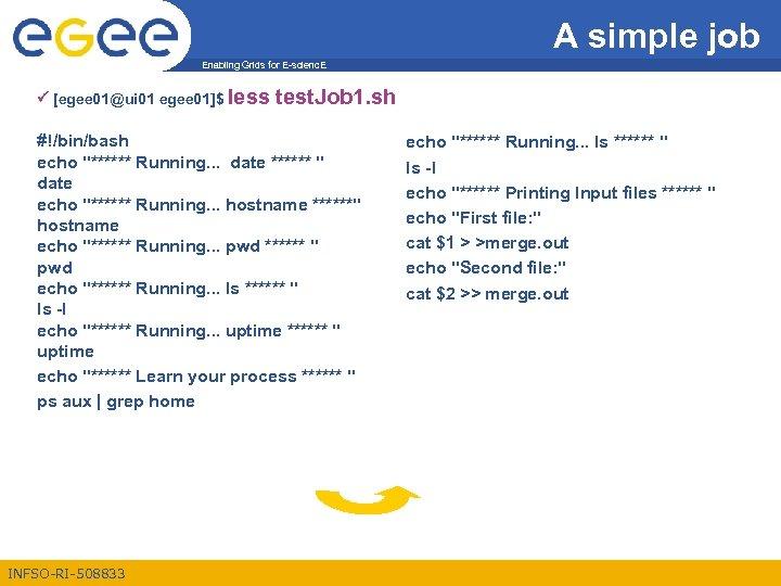 A simple job Enabling Grids for E-scienc. E [egee 01@ui 01 egee 01]$ less