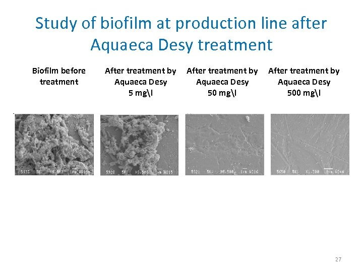 Study of biofilm at production line after Aquaeca Desy treatment Biofilm before treatment After