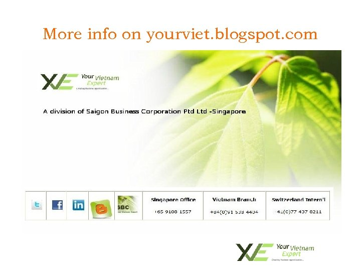 More info on yourviet. blogspot. com • To import SBC-YVE Higher Education services