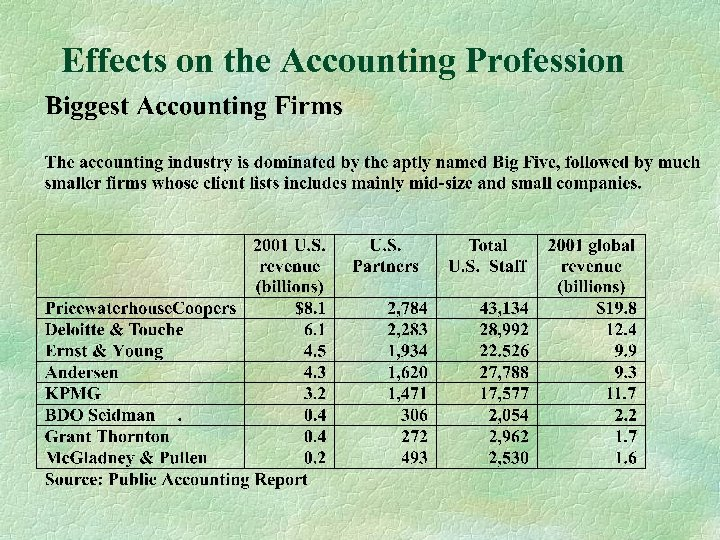 Effects on the Accounting Profession