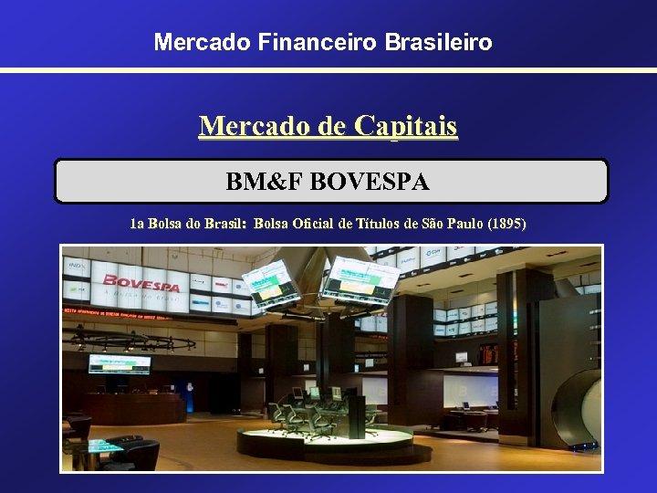 Mercado Financeiro Brasileiro Mercado de Capitais BM&F BOVESPA 1 a Bolsa do Brasil: Bolsa