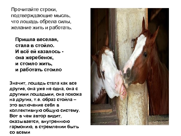 Прочитайте строки, подтверждающие мысль, что лошадь обрела силы, желание жить и работать. Пришла веселая,
