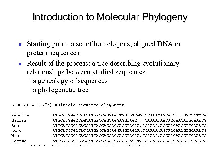 Introduction to Molecular Phylogeny Starting point: a set of homologous, aligned DNA or protein