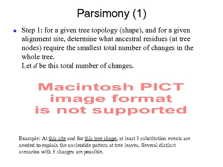 Parsimony (1) Step 1: for a given tree topology (shape), and for a given
