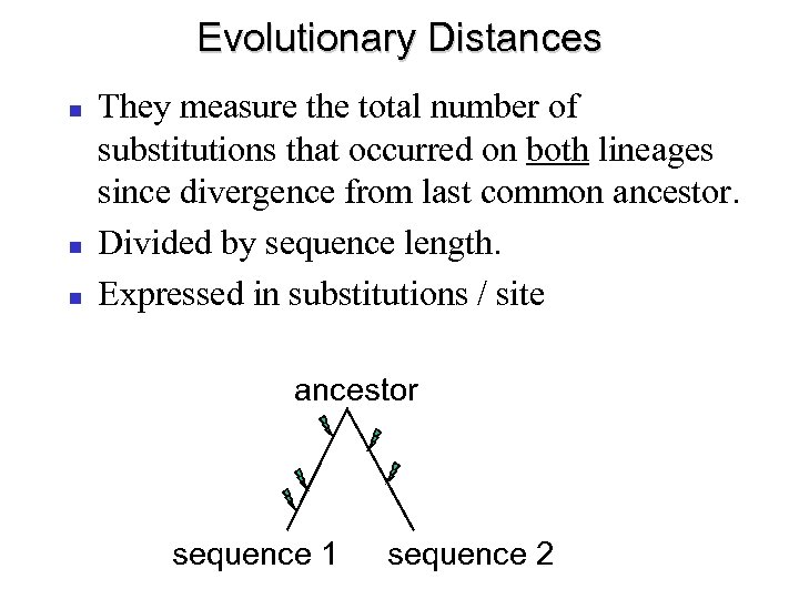 Evolutionary Distances They measure the total number of substitutions that occurred on both lineages