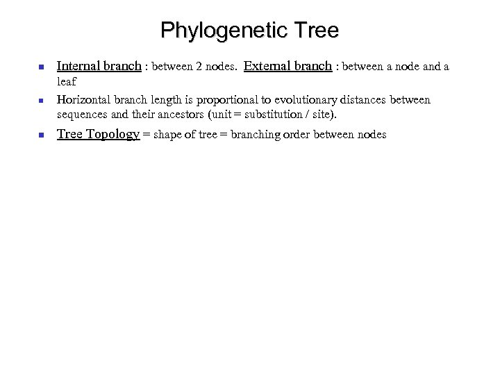Phylogenetic Tree Internal branch : between 2 nodes. External branch : between a node