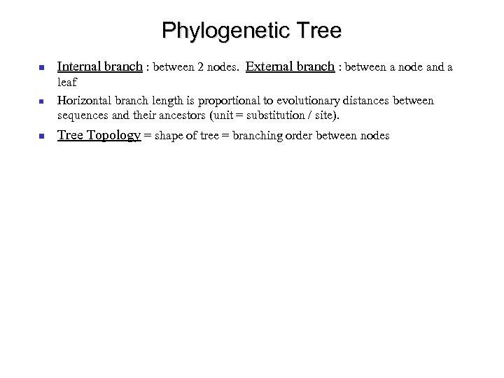 Phylogenetic Tree Internal branch : between 2 nodes. External branch : between a node