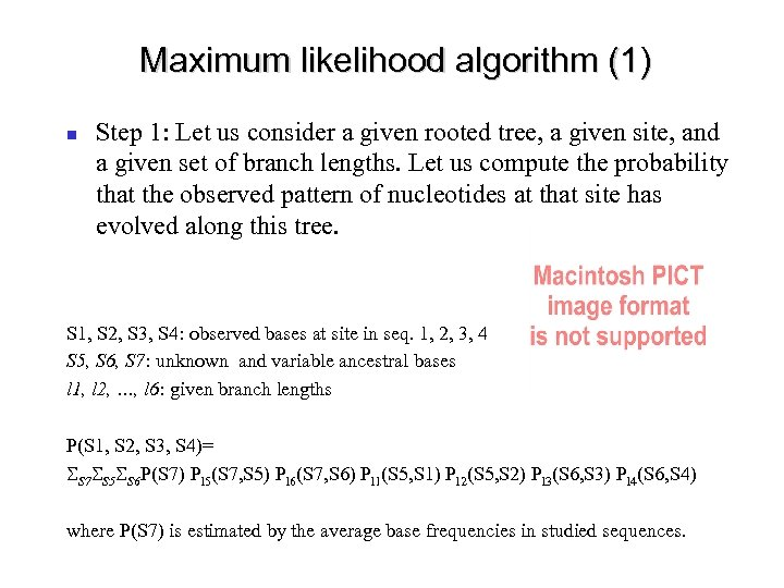 Maximum likelihood algorithm (1) Step 1: Let us consider a given rooted tree, a
