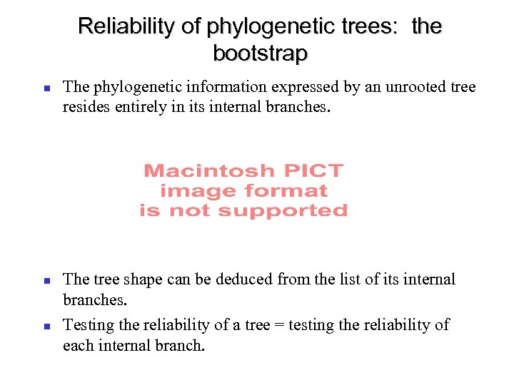 Reliability of phylogenetic trees: the bootstrap The phylogenetic information expressed by an unrooted tree