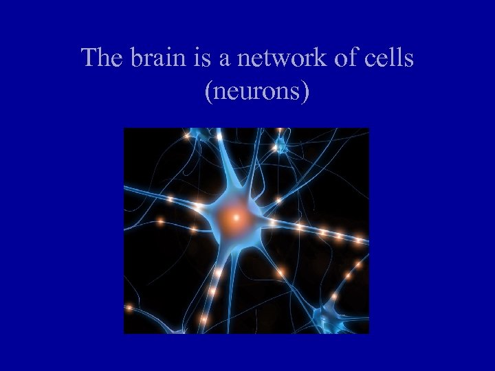 The brain is a network of cells (neurons)