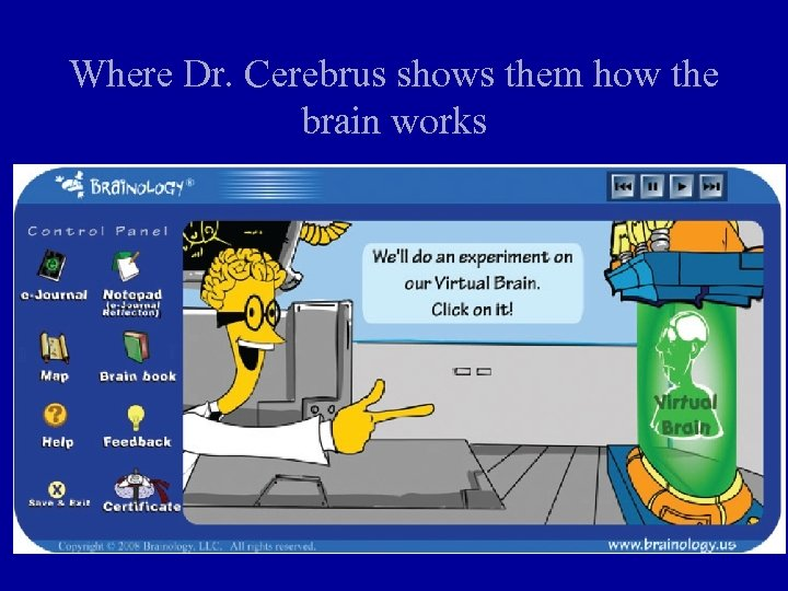 Where Dr. Cerebrus shows them how the brain works