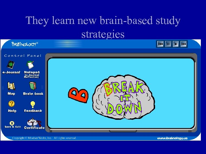 They learn new brain-based study strategies
