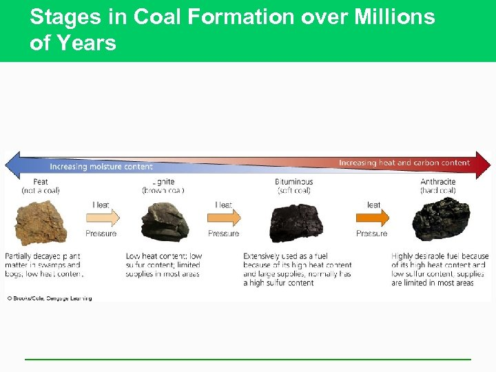 Stages in Coal Formation over Millions of Years
