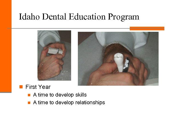 Idaho Dental Education Program n First Year n A time to develop skills n