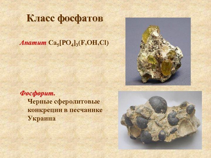Класс фосфатов Апатит Са 5[РO 4]3(F, ОН, Cl) Фосфорит. Черные сферолитовые конкреции в песчанике