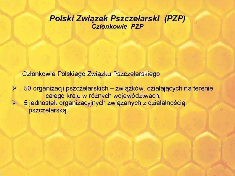 Polski Związek Pszczelarski (PZP) Członkowie PZP Członkowie Polskiego Związku Pszczelarskiego 50 organizacji pszczelarskich –