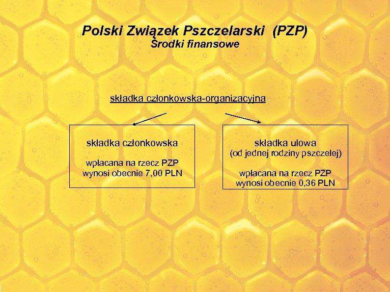 Polski Związek Pszczelarski (PZP) Środki finansowe składka członkowska-organizacyjna składka członkowska składka ulowa (od jednej