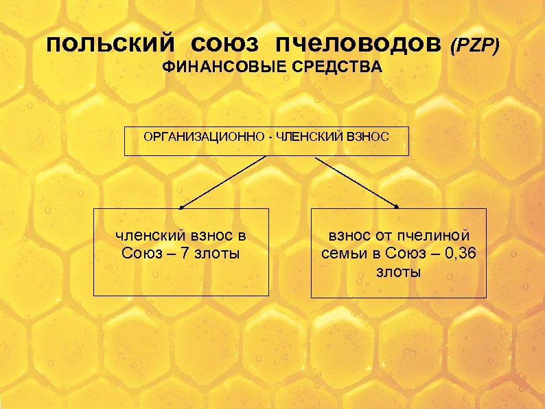 польский союз пчеловодов (PZP) ФИНАНСОВЫЕ СРЕДСТВА ОРГАНИЗАЦИОННО - ЧЛЕНСКИЙ ВЗНОС членский взнос в Союз