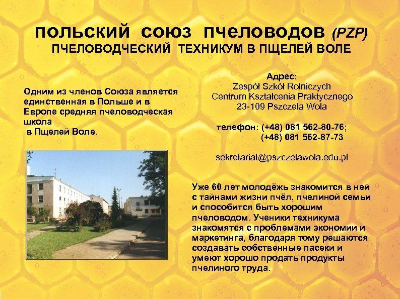 польский союз пчеловодов (PZP) ПЧЕЛОВОДЧЕСКИЙ ТЕХНИКУМ В ПЩЕЛЕЙ ВОЛЕ Одним из членов Союза является