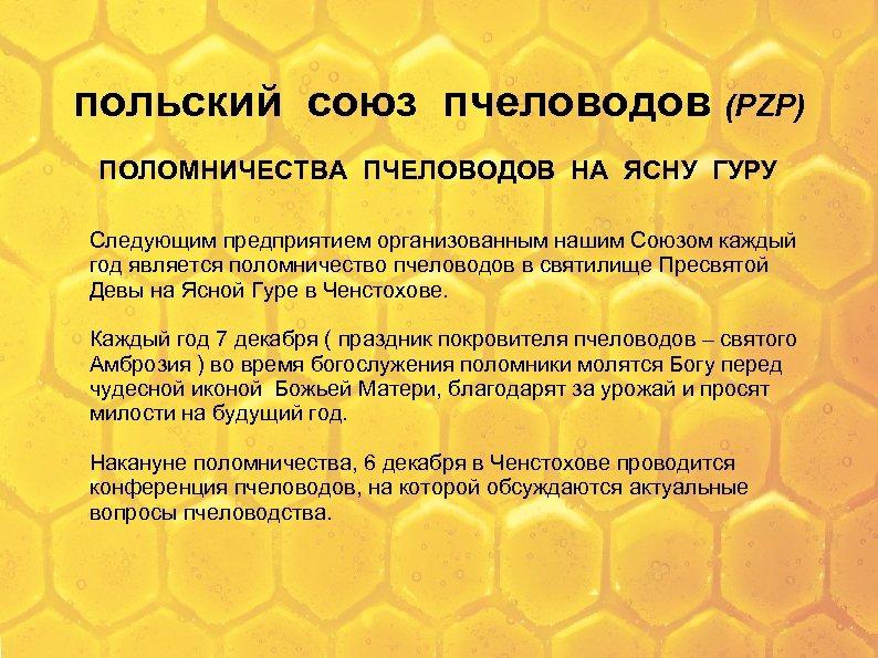 польский союз пчеловодов (PZP) ПОЛОМНИЧЕСТВА ПЧЕЛОВОДОВ НА ЯСНУ ГУРУ Следующим предприятием организованным нашим Союзом