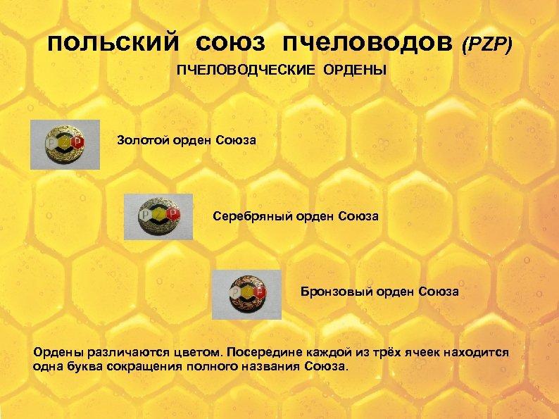 польский союз пчеловодов (PZP) ПЧЕЛОВОДЧЕСКИЕ ОРДЕНЫ Золотой орден Союза Серебряный орден Союза Бронзовый орден