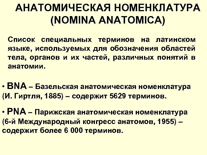 АНАТОМИЧЕСКАЯ НОМЕНКЛАТУРА (NOMINA ANATOMICA) Список специальных терминов на латинском языке, используемых для обозначения областей
