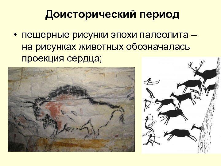 Доисторический период • пещерные рисунки эпохи палеолита – на рисунках животных обозначалась проекция сердца;