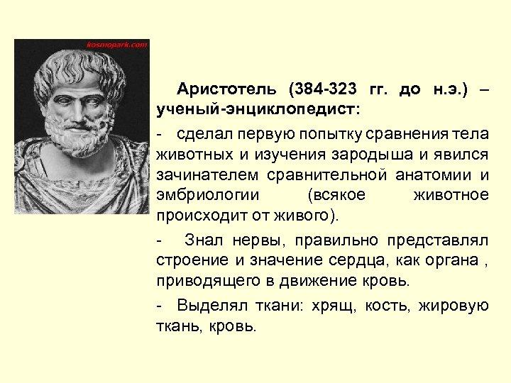 Аристотель (384 -323 гг. до н. э. ) – ученый-энциклопедист: - сделал первую попытку