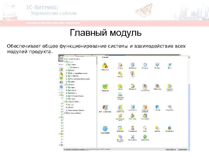Главный модуль Обеспечивает общее функционирование системы и взаимодействие всех модулей продукта.