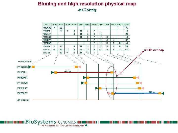 Binning and high resolution physical map Mi Contig 3, 9 kb overlap