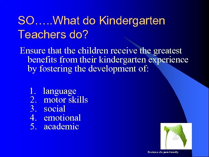 SO…. . What do Kindergarten Teachers do? Ensure that the children receive the greatest