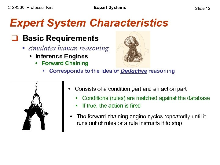 CIS 4330: Professor Kirs Expert Systems Slide 12 Expert System Characteristics q Basic Requirements