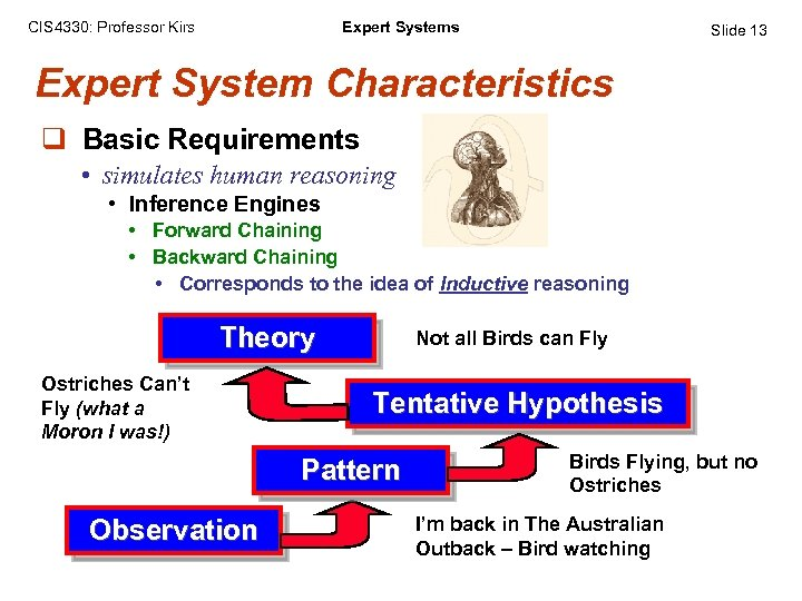 CIS 4330: Professor Kirs Expert Systems Slide 13 Expert System Characteristics q Basic Requirements