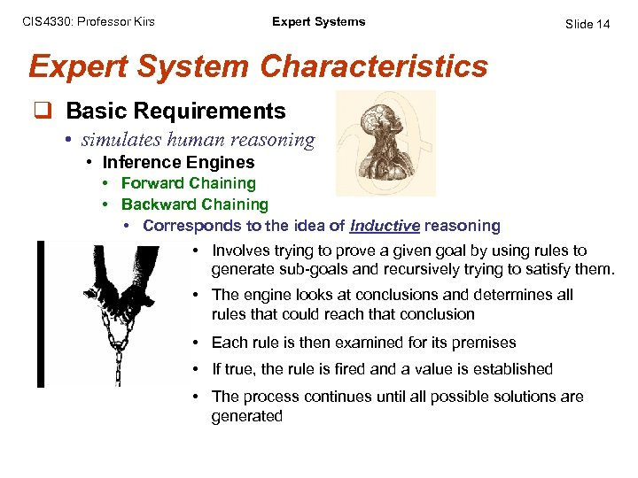 CIS 4330: Professor Kirs Expert Systems Slide 14 Expert System Characteristics q Basic Requirements