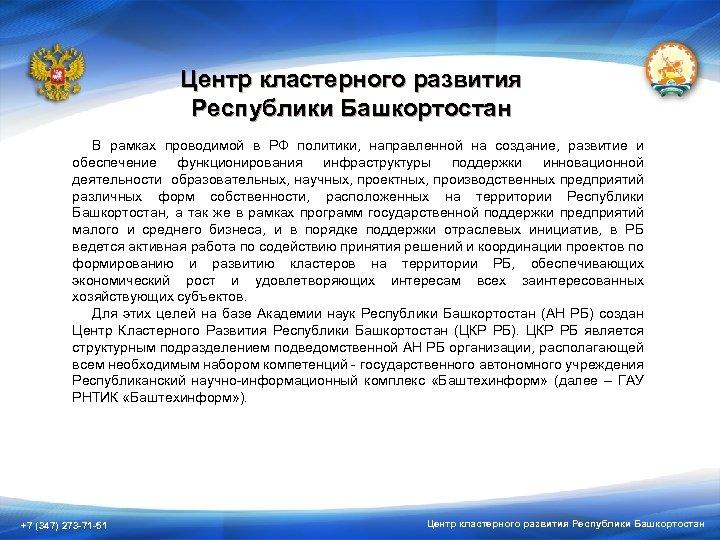 Центр кластерного развития Республики Башкортостан В рамках проводимой в РФ политики, направленной на создание,