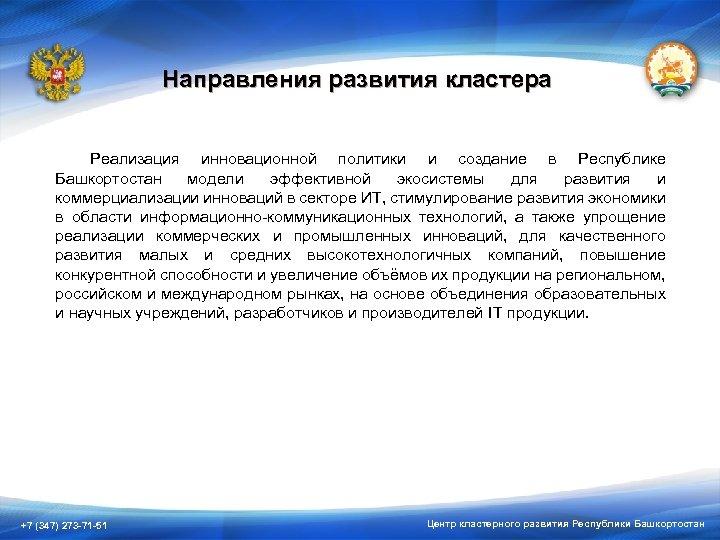Направления развития кластера Реализация инновационной политики и создание в Республике Башкортостан модели эффективной экосистемы