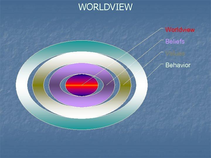 WORLDVIEW Worldview Beliefs Values Behavior