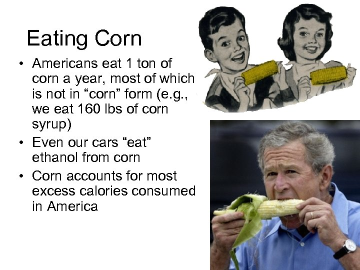 Eating Corn • Americans eat 1 ton of corn a year, most of which