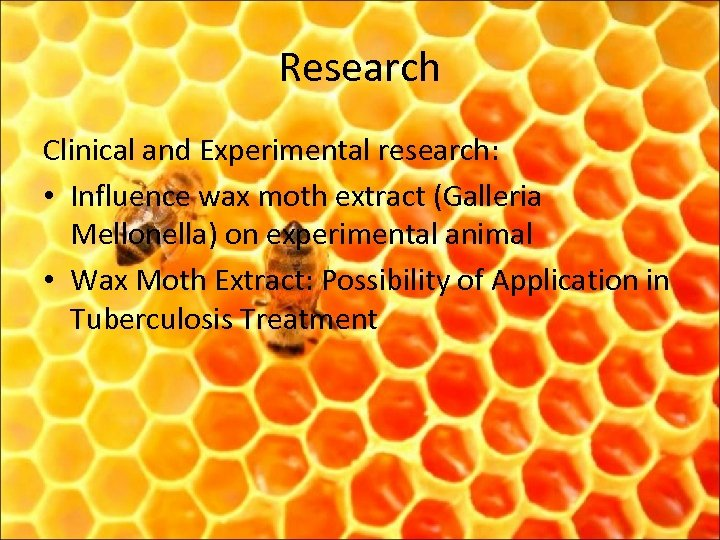 Research Clinical and Experimental research: • Influence wax moth extract (Galleria Mellonella) on experimental