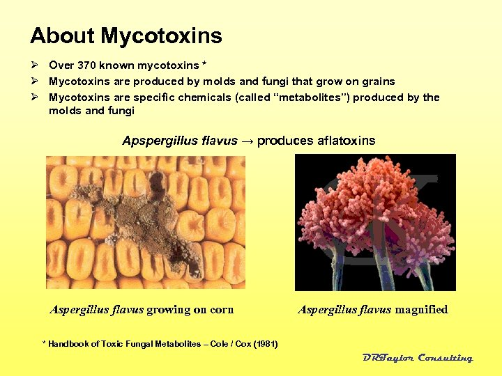 About Mycotoxins Ø Over 370 known mycotoxins * Ø Mycotoxins are produced by molds