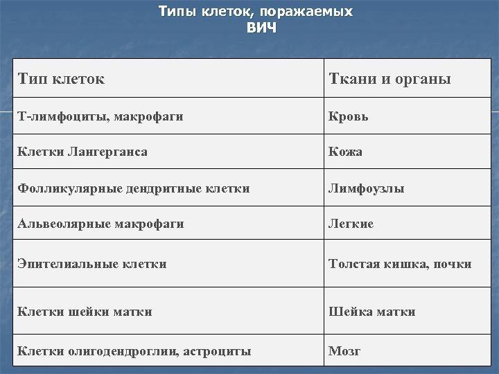 Типы клеток, поражаемых ВИЧ Тип клеток Ткани и органы Т-лимфоциты, макрофаги Кровь Клетки Лангерганса