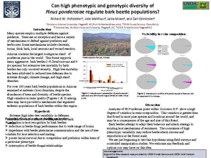 Can high phenotypic and genotypic diversity of Pinus ponderosae regulate bark beetle populations? Richard