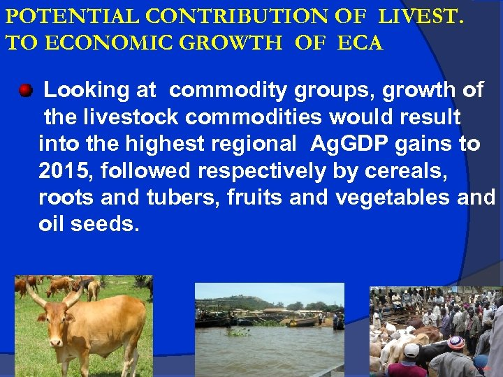 POTENTIAL CONTRIBUTION OF LIVEST. TO ECONOMIC GROWTH OF ECA Looking at commodity groups, growth