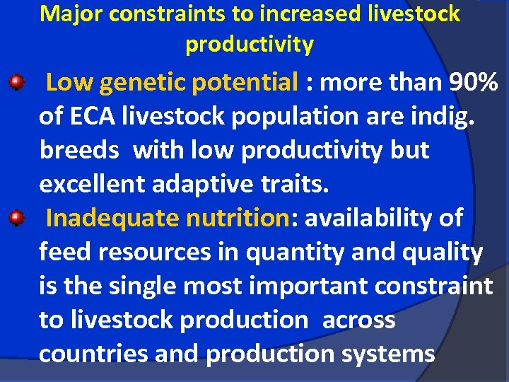 Major constraints to increased livestock productivity Low genetic potential : more than 90% of