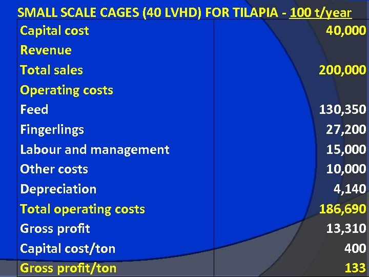 SMALL SCALE CAGES (40 LVHD) FOR TILAPIA - 100 t/year Capital cost 40, 000