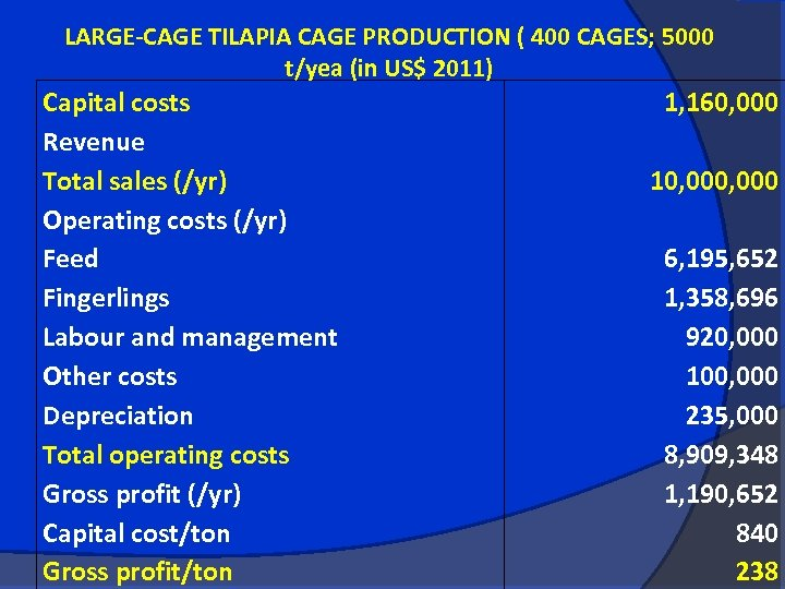 LARGE-CAGE TILAPIA CAGE PRODUCTION ( 400 CAGES; 5000 t/yea (in US$ 2011) Capital costs