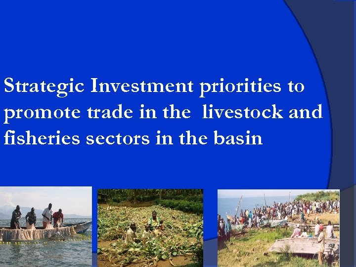 Strategic Investment priorities to promote trade in the livestock and fisheries sectors in the