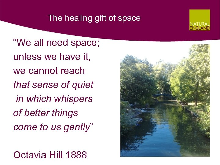"The healing gift of space ""We all need space; unless we have it, we"