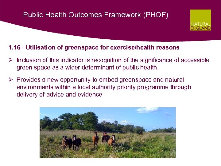 Public Health Outcomes Framework (PHOF) 1. 16 - Utilisation of greenspace for exercise/health reasons